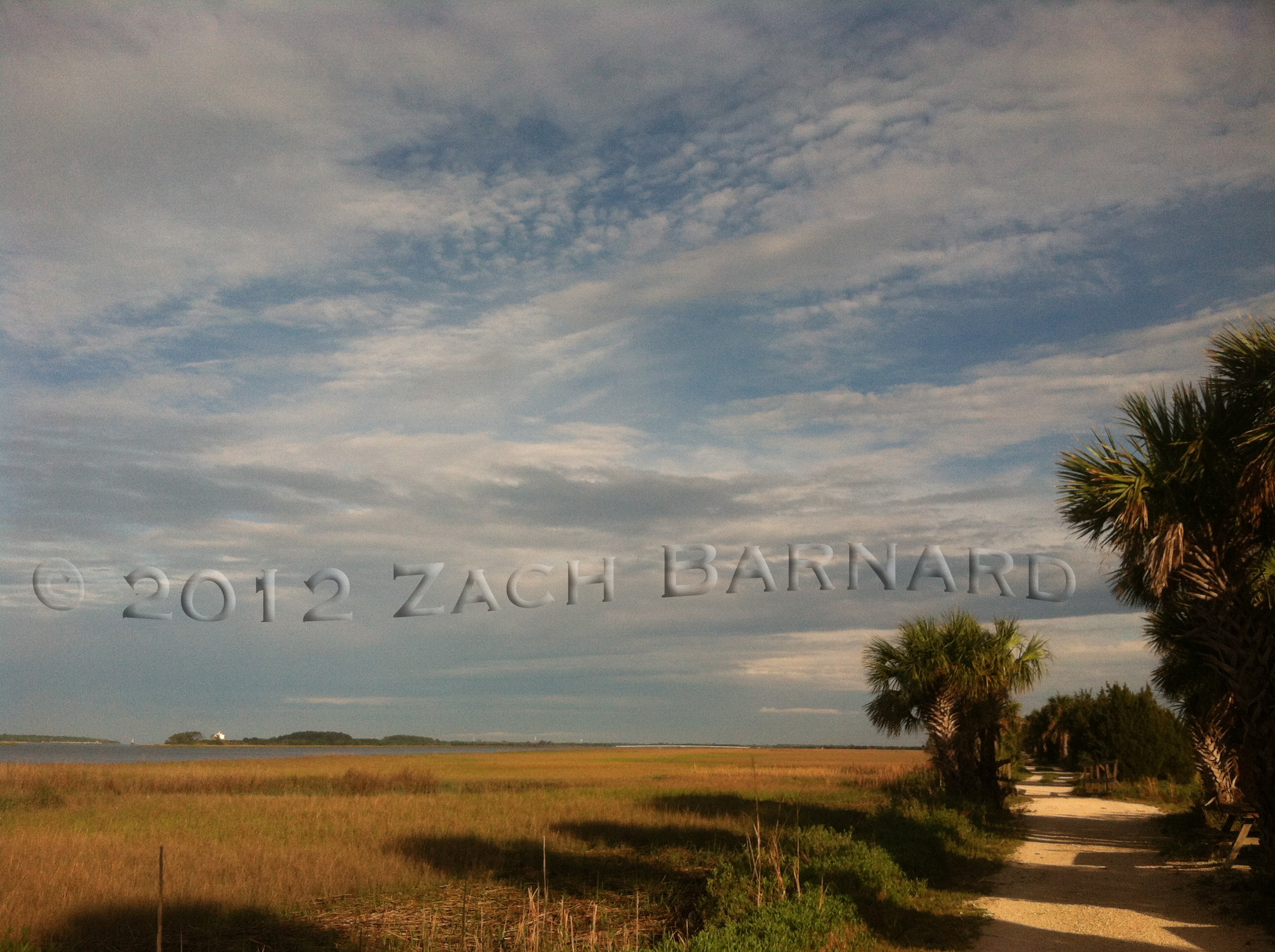 A Walk Near Tybee